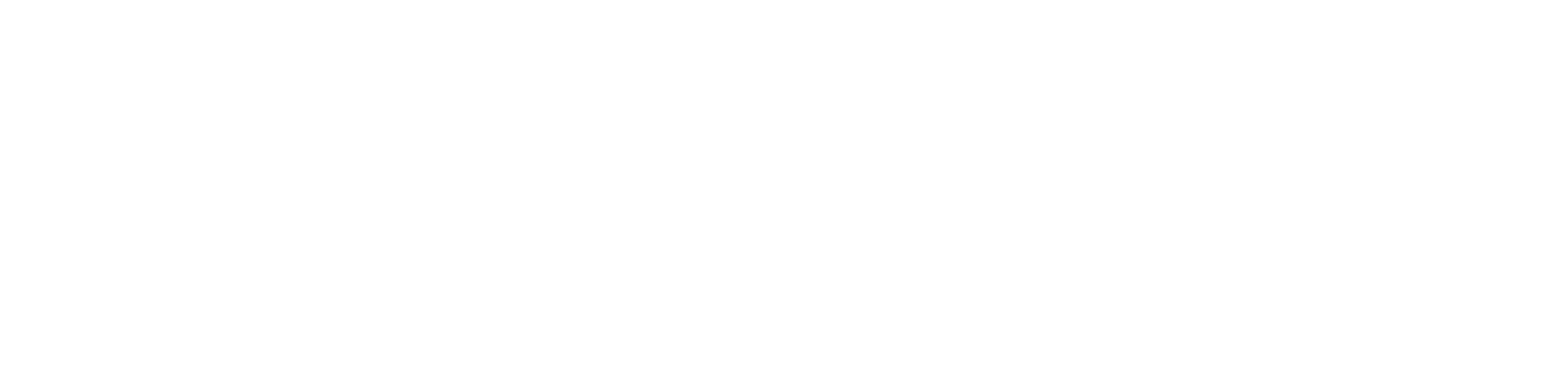 ZCS logo design 2019 website2