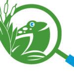 ODC_Logo_Frog_Mac_Glass-website(1) (1)