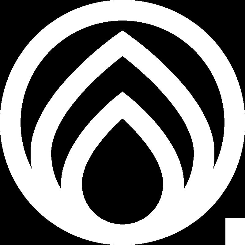 ZCS-icon_RGB-white